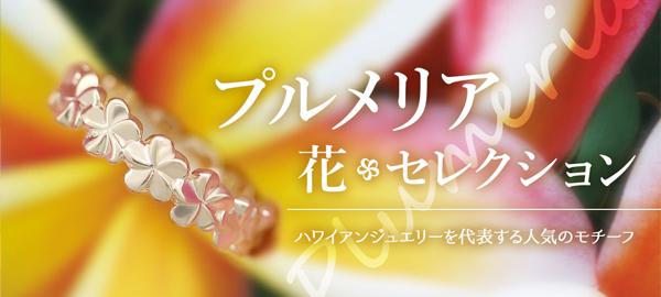 プルメリア花セレクション