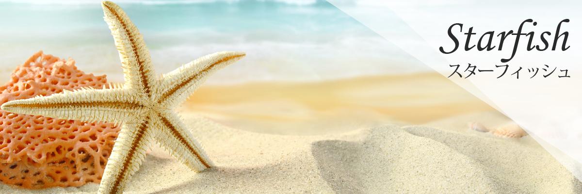 Starfish スターフィッシュ